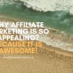Why Affiliate Marketing is So Appealing? Because it is Awesome!