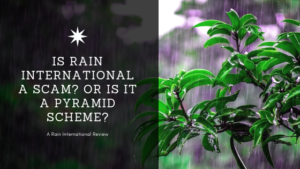 Is Rain International a Scam_ Or is it a Pyramid Scheme_