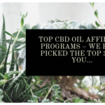Top CBD Oil Affiliate Programs – We have Picked the Top 3 For You…