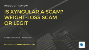 Is Xyngular a Scam
