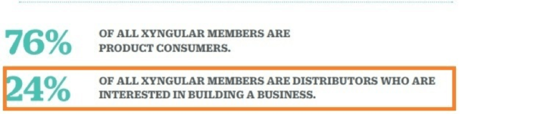 The number of distributors at Xyngular - 24%