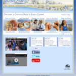 a screenshot of the vantel pearls website showing it works