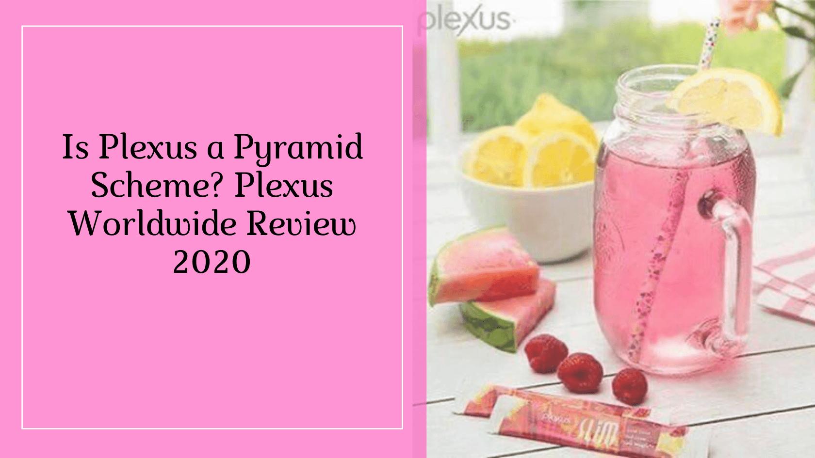 Is Plexus a Pyramid Scheme_
