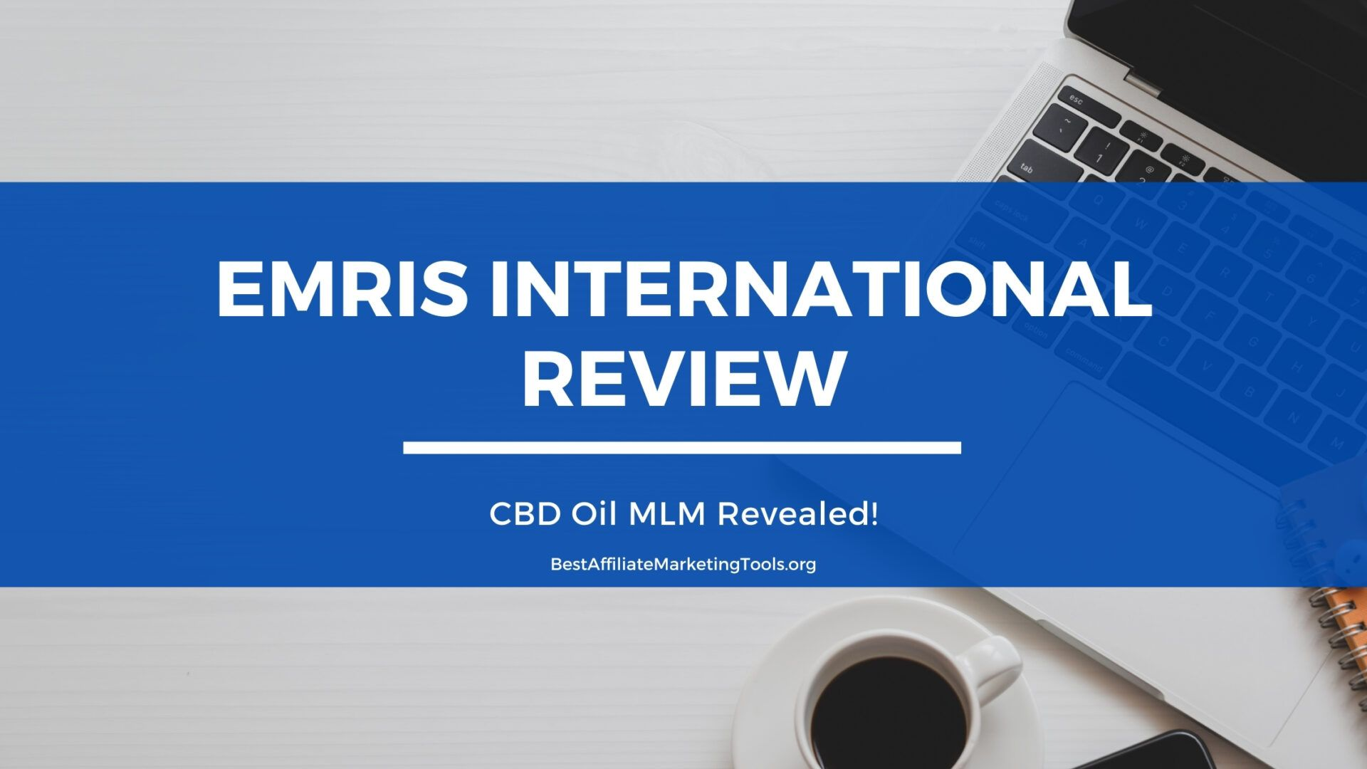 Emris International Review
