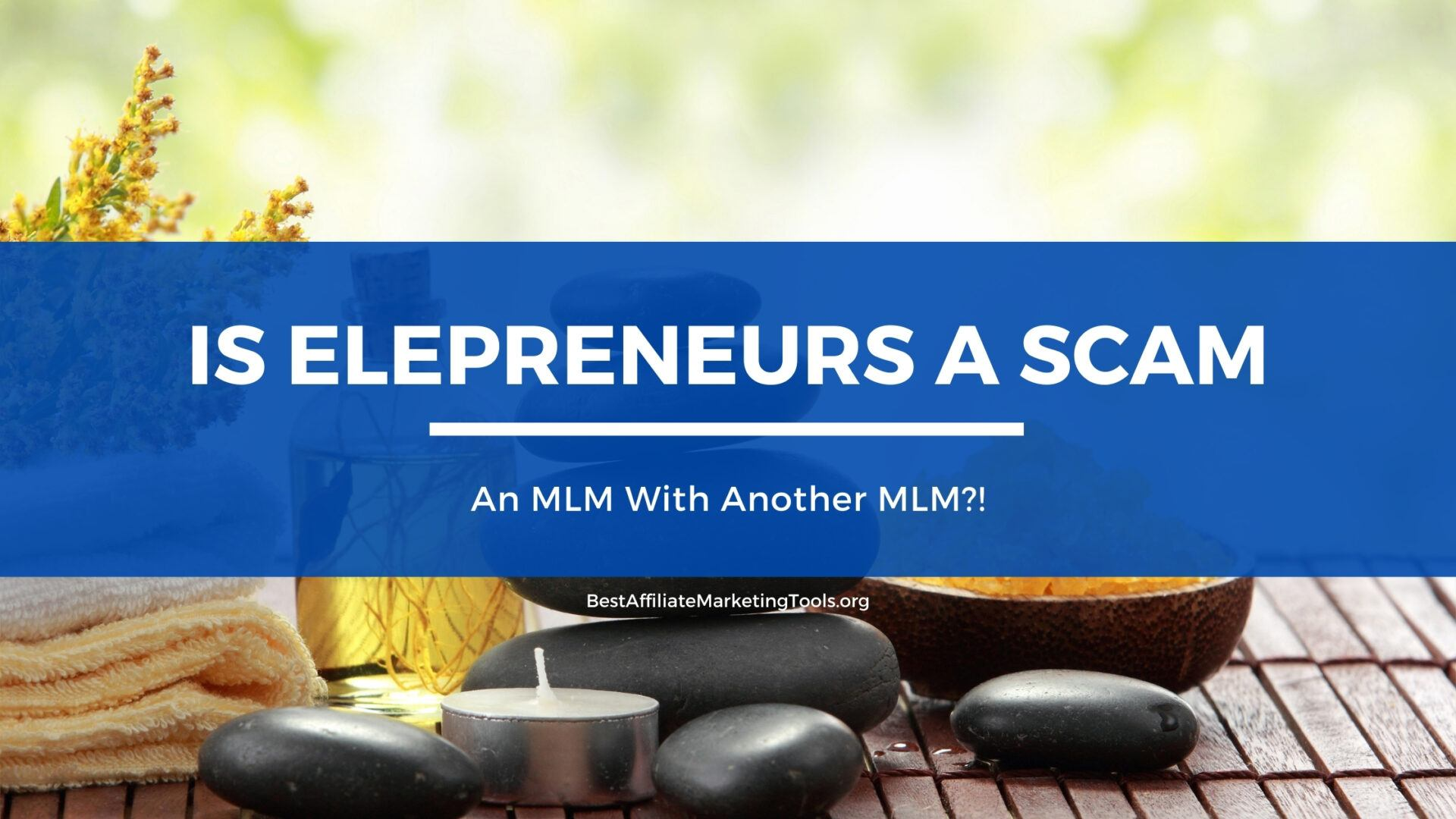 Is Elepreneurs a Scam